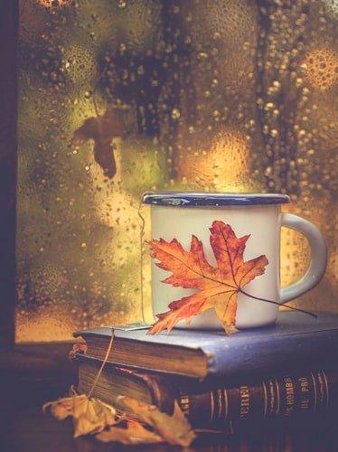 کتاب در پاییز